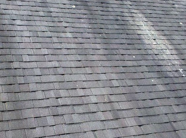 California roof cleaning tips by Western Roofing Systems