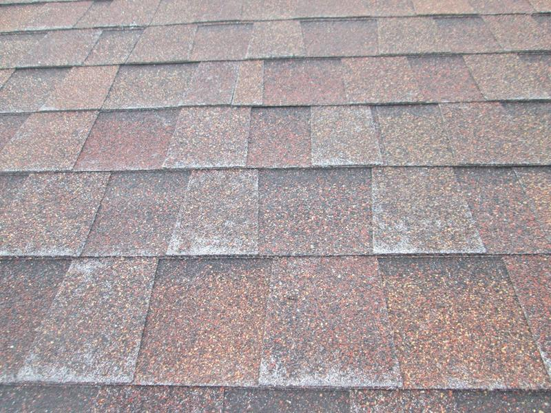 California tile roof granule loss needs replacement